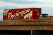 Craft Beer New Jersey Shore | US Justice Department to Investigate AB-InBev After Complaints of the Company Pushing Craft Beer out of Distributors | New Jersey Shore