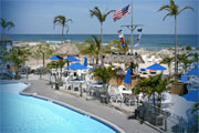 Sea Shell: Long Beach Island